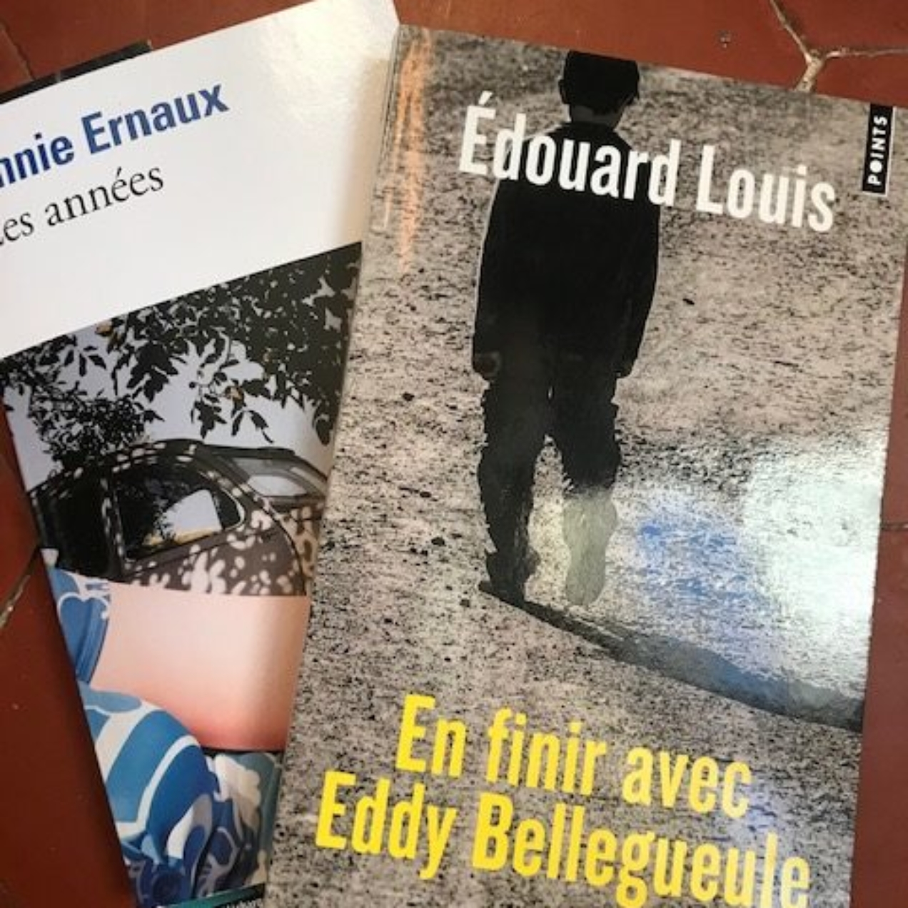 lecture #137 : Eddy Bellegueule